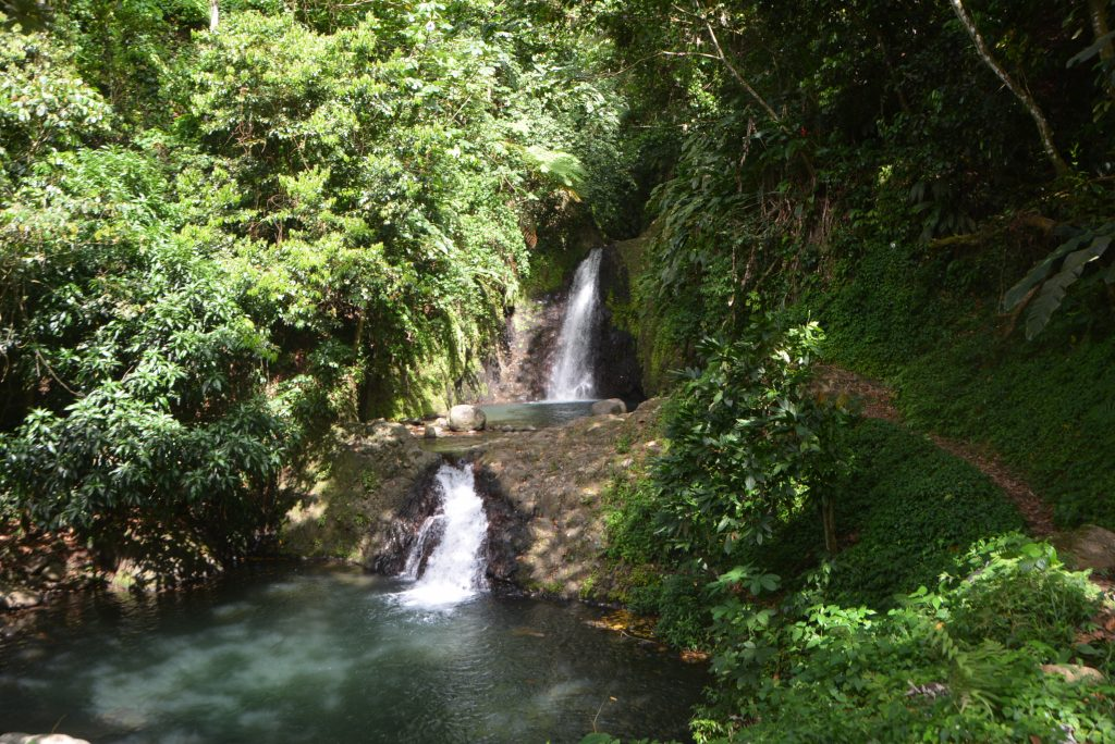 #PureGrenada: The first two pools of the Seven Sisters Waterfalls
