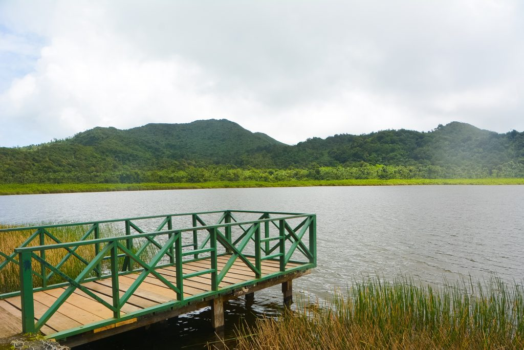 #PureGrenada: The lake at Grand Etang National Park and Forest Reserve