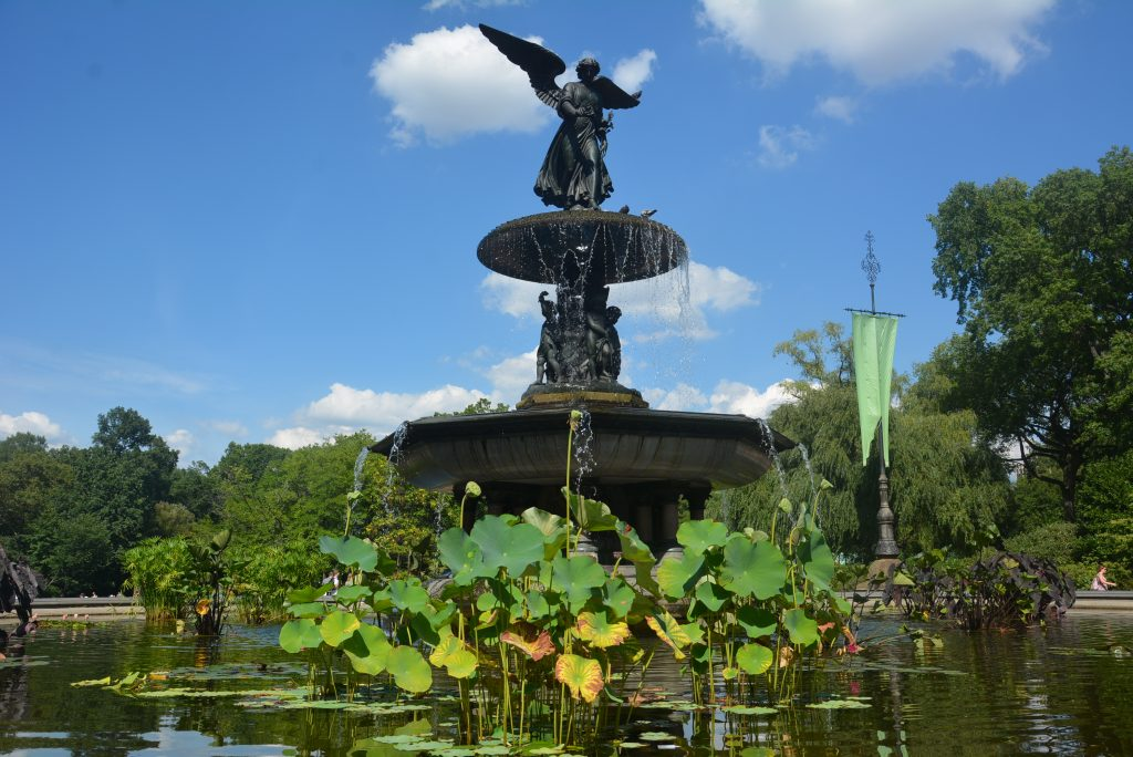 Bethesda Fountain in Central Park #NewYork