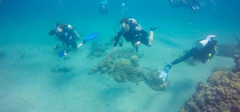 Scuba diving in St. Lucia.