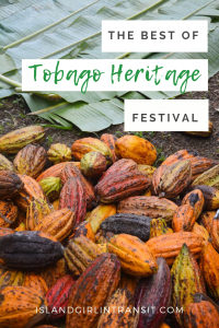 The Best of Tobago Heritage Festival