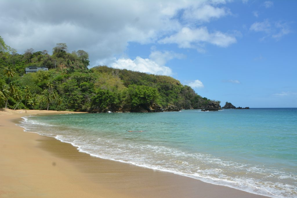 Tobago Road Trip: Englishman's Bay