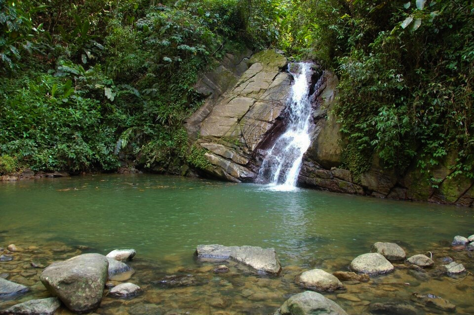 #Tobago #RoadTrip: Castara Waterfalls
