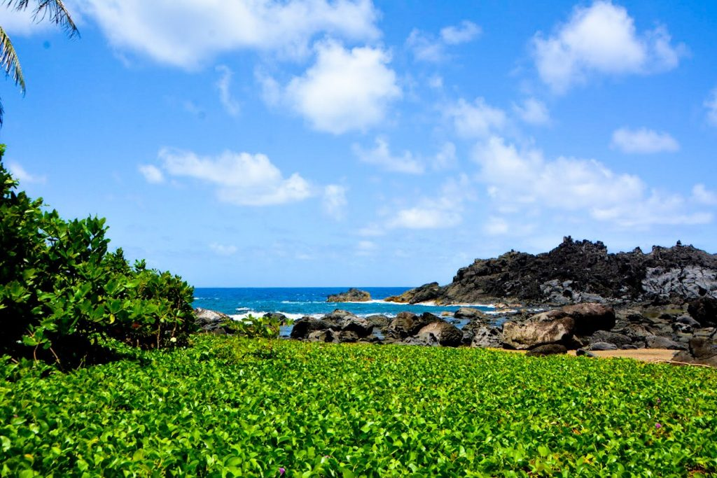 St. Vincent and The Grenadines Travel Itinerary
