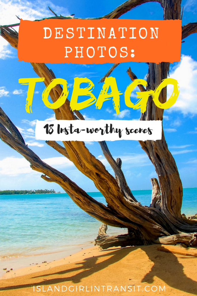 Travel Photos: Destination Tobago Photos