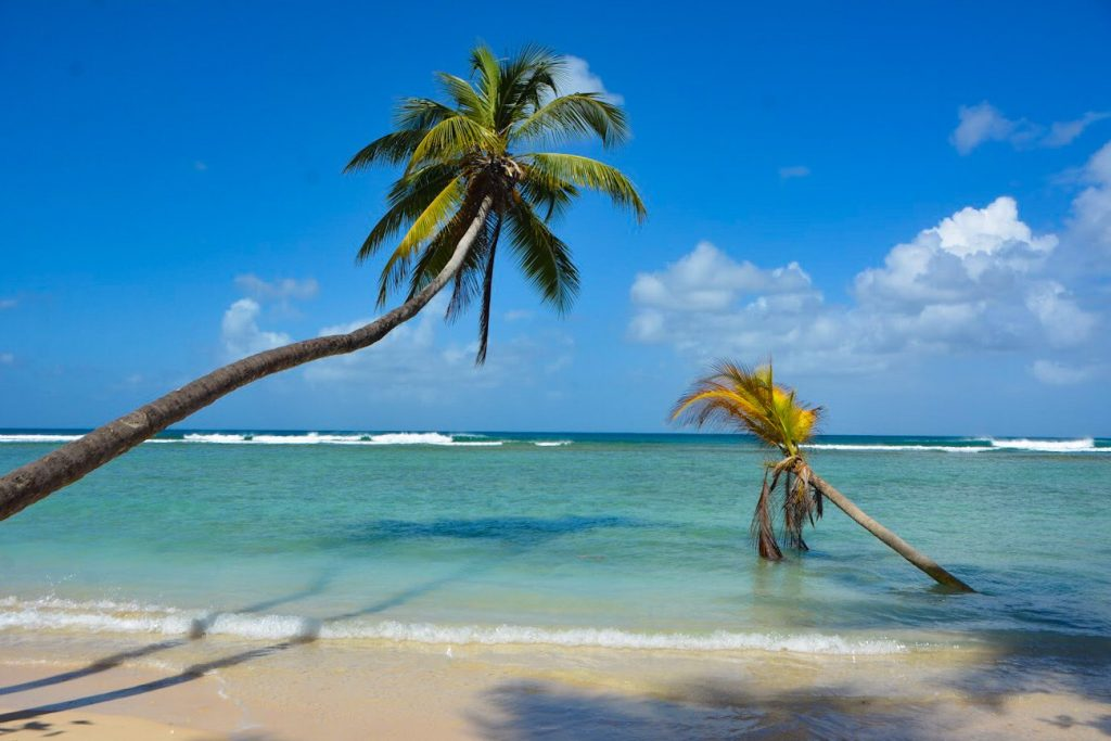 Travel Photos: Destination Tobago Photos
