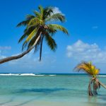 Best Beaches in #Tobago