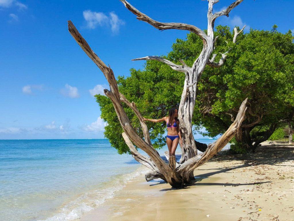 Tobago Photo Ops - No Man's Land
