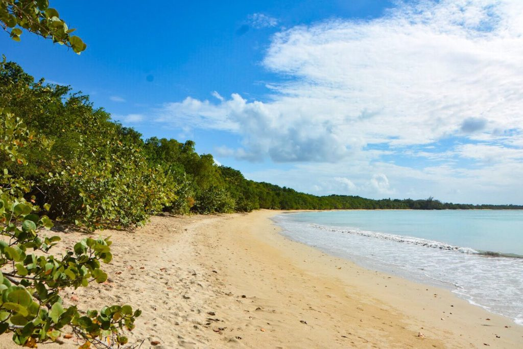 Best Tobago Beaches: Buccoo Beach