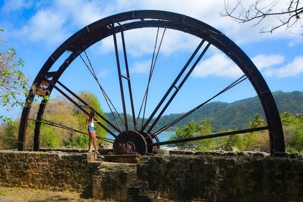 Tobago Photo Ops - Speyside Waterwheel