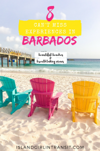 Can't Miss Experiences in Barbados