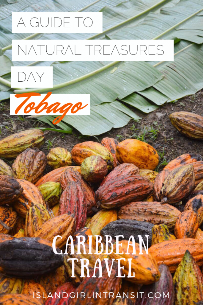 Tobago Heritage Festival: Charlotteville Natural Treasures Day