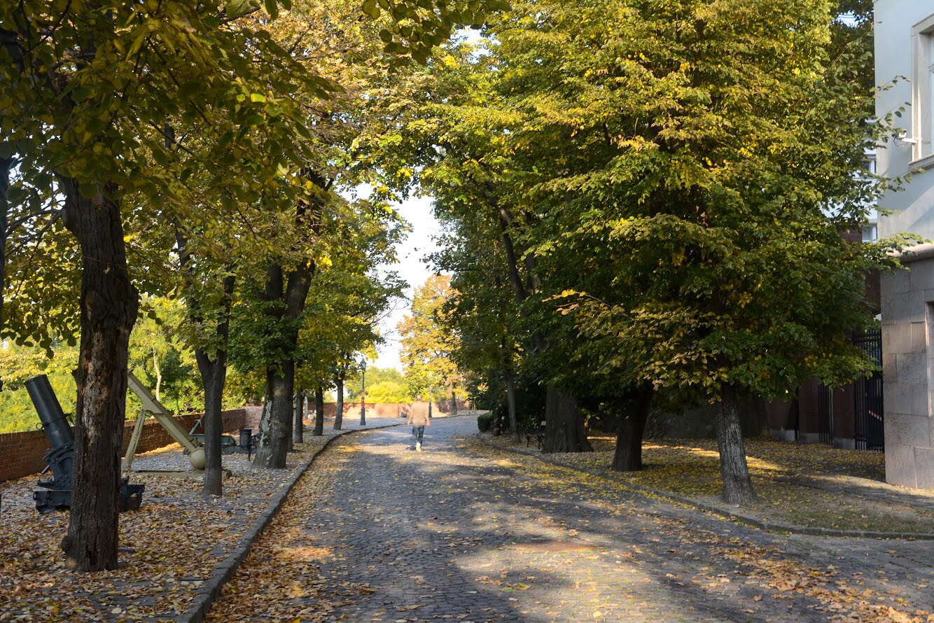 Cool things to do in Budapest: Stroll Through Old Town