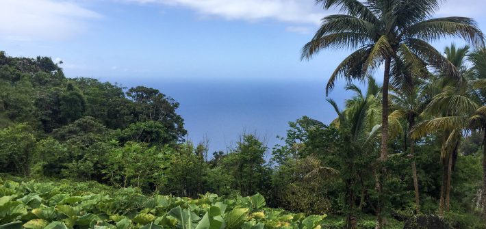 Very Real Reasons to Visit Saba