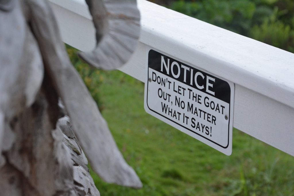 Funny Signs Found in Saba