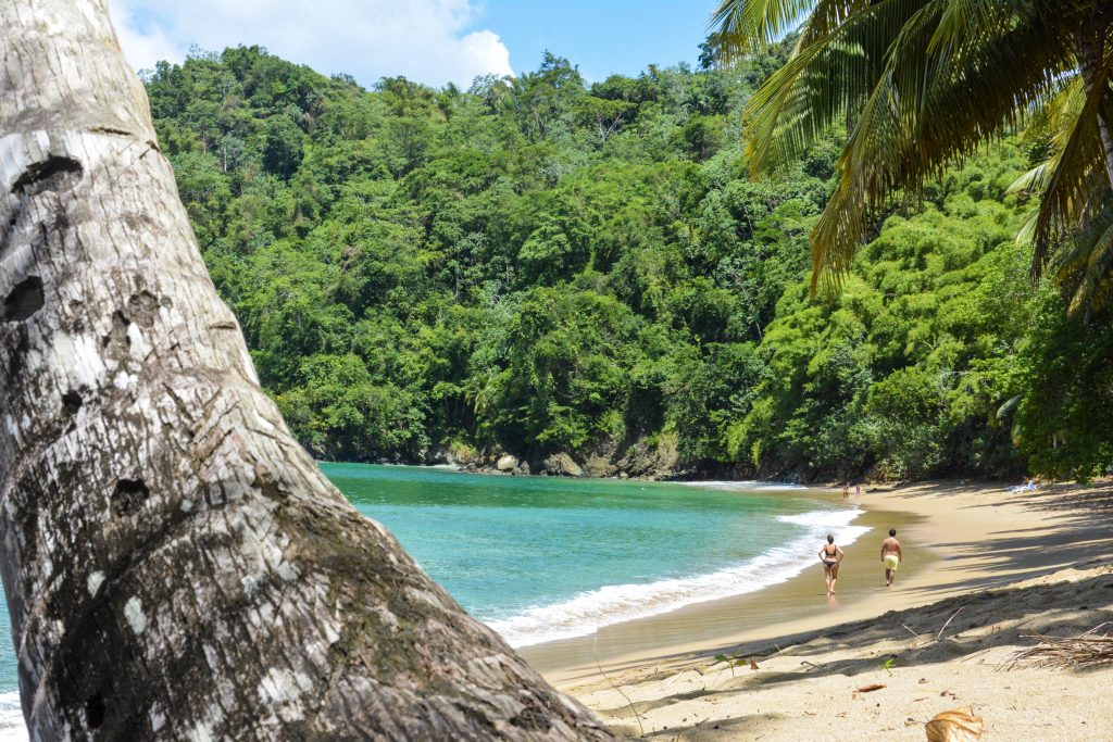 Caribbean Islands for solitude: Tobago