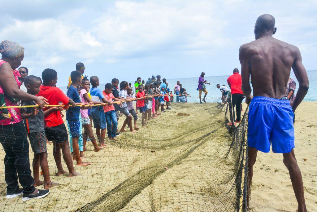 Tobago Experience: Pull seine