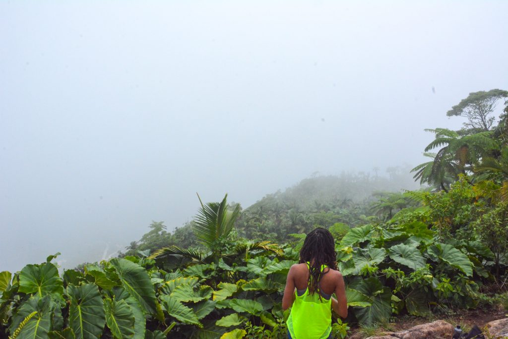 Epic things to do in the Caribbean: Hike Mt. Scenery in Saba