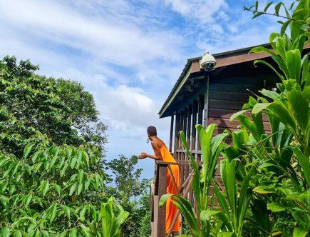 Eco-cabin in Paramin
