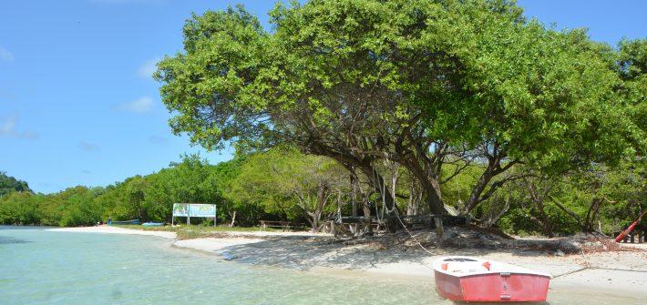 Island Hopping in the Caribbean